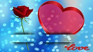 Обои Розы День всех влюблённых Сердце Английский Шаблон поздравительной открытки