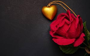 Фото Роза День всех влюблённых Сердечко Красная Шаблон поздравительной открытки
