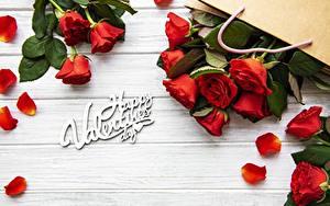 Обои Розы День святого Валентина Лепестков Слово - Надпись Английский цветок
