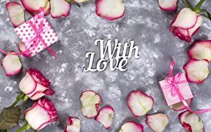 Обои Роза День всех влюблённых Подарок Инглийские Слова With Love Цветы