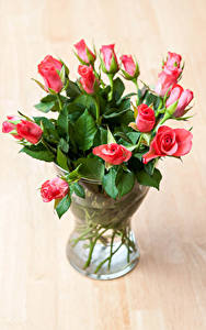 Обои Розы Вазы Розовый Цветы