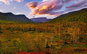 Картинки Россия Осенние Горы Дерево Облако Khibiny Природа