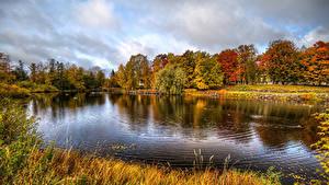 Фото Россия Осень Река Трава Деревья Vuoksa River near the Korela fortress Priozersk Природа