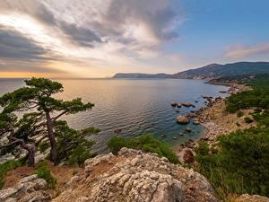 Обои Россия Крым Берег Море Утес Дерево Урочище Аязьма