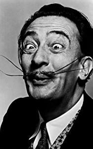 Обои Salvador Dali Мужчины Черно белое Усы человека Лицо Знаменитости
