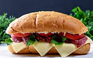 Фотографии Сэндвич Булочки Сыры Колбаса Пища