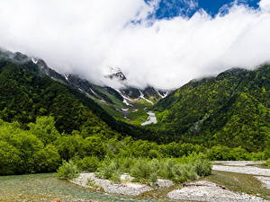 Фотографии Пейзаж Гора Лес Облака Природа