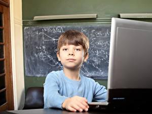 Картинка Школьные Мальчишка Взгляд Ноутбук Дети