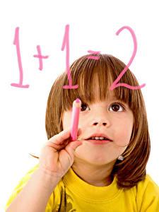 Фотография Школьные Белый фон Девочки Взгляд Руки Дети