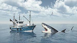 Обои для рабочего стола Море Акулы Чайки Катера животное 3D_Графика