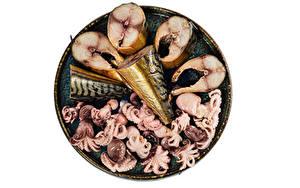 Картинки Морепродукты Рыба Осминог Белый фон Еда
