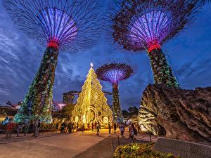 Обои Сингапур Вечер Парк Дизайн Gardens by The Bay Природа