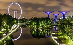 Фото Сингапур Парк Вечер Дизайна Залива Дерево Gardens by the Bay