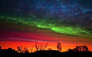 Обои для рабочего стола Небо Рассветы и закаты Силуэт Дерева Природа