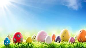 Обои Небо Шаблон поздравительной открытки Яйцами