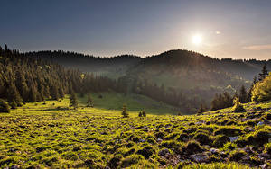 Фотография Словакия Гора Луга Солнца Дерево Velka Fatra