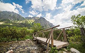 Фотографии Словакия Гора Реки Мосты Деревянный Tatras Mountains