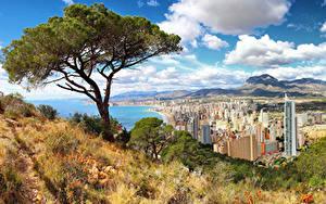Обои для рабочего стола Испания Здания Побережье Деревья Холмы Alicante город