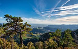 Фотография Испания Горы Небо Деревьев Облако Berga, Catalonia