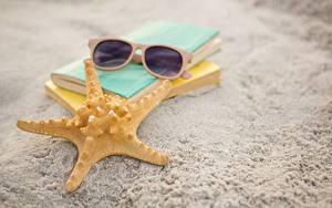Фотографии Морские звезды Вблизи Песка Очках