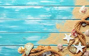 Картинки Морские звезды Ракушки Лето Доски Песке Шаблон поздравительной открытки Трос