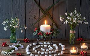 Фотография Натюрморт Букеты Подснежники Свечи Камень Ягоды Доски цветок
