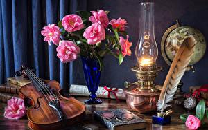 Картинки Натюрморт Камелия Керосиновая лампа Скрипки Перья Вазы Очках Книга цветок