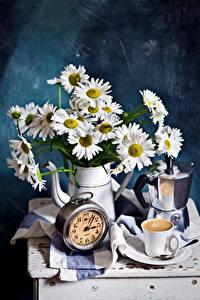 Картинка Натюрморт Ромашка Кофе Часы Кувшин Чашке цветок