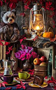 Фотография Натюрморт Керосиновая лампа Плюшевый мишка Астры Яблоки Кофе Тыква Чашка