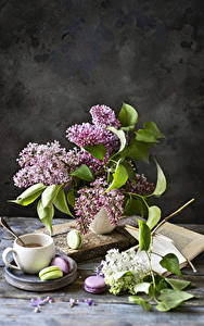 Картинка Натюрморт Сирень Кофе Ветвь Чашке Макарон цветок Еда
