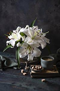 Обои для рабочего стола Натюрморт Лилия Кофе Доски Белая Сахара Чашке цветок Еда