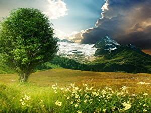 Фото Лето Пейзаж Горы Трава Деревья Облачно Природа
