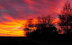 Картинки Рассветы и закаты Силуэт Природа