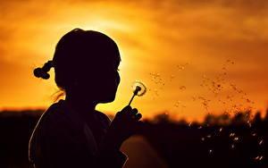Картинки Рассветы и закаты Одуванчики Девочка Силуэты Дети