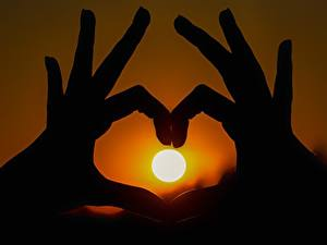Фотография Рассвет и закат Пальцы Вблизи Руки Солнца Силуэты