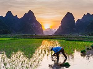 Фотография Рассветы и закаты Горы Поля Азиаты Шляпе Работа