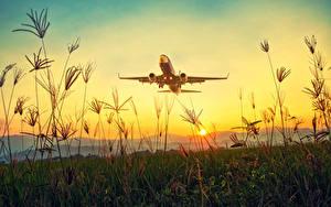 Фотографии Рассвет и закат Самолеты Пассажирские Самолеты Трава Взлетает Солнца Природа