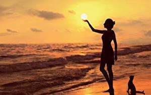 Фотографии Рассветы и закаты Море Силуэта Солнце G.BUER Природа Девушки