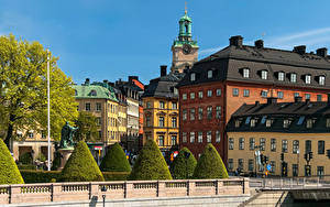 Фото Швеция Стокгольм Дома Кусты