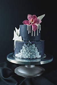 Фотография Сладкая еда Торты Орхидея Серый фон Дизайна Еда