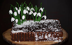 Картинки Сладости Торты Галантус Шоколад Дизайн Черный фон Еда