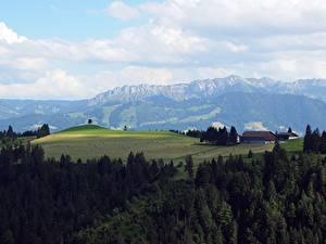 Картинки Швейцария Лес Поля Гора Горизонта Napf Bereich, Kanton Bern Природа