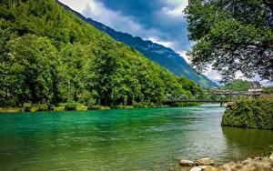 Картинки Швейцария Озеро Горы Лес Мосты Природа