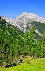 Картинка Швейцария Горы Леса Альпы Деревья Природа
