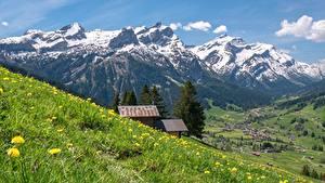 Фото Швейцария Горы Луга Траве Bernese Alps Природа