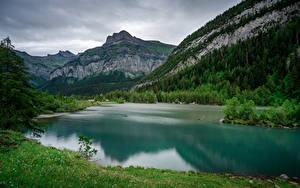 Картинка Швейцария Горы Альп Деревьев Lac de Derborence Природа