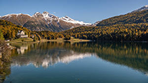 Фото Швейцария Гора Озеро Осенние Альп Lake St. Moritz Природа