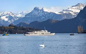 Обои для рабочего стола Швейцария Горы Озеро Птицы Лебеди Речные суда Альп lake Lucerne Природа