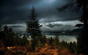 Картинка Швейцария Горы Озеро Леса Вечер Осень Hilterfingen Canton of Berne Природа