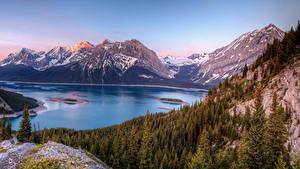 Фотография Швейцария Горы Озеро Леса Пейзаж